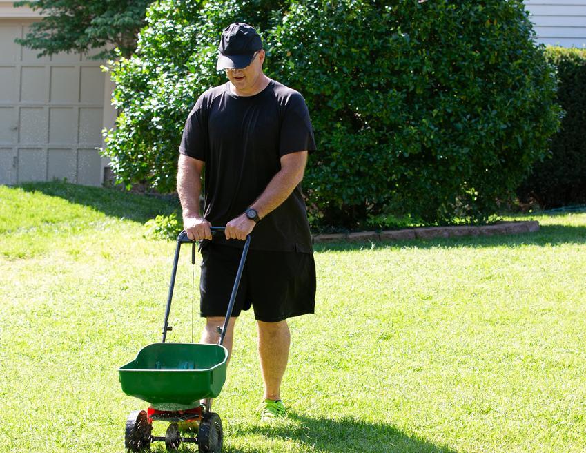 Nawożenie trawnika przez mężczyznę, a także nawóz do trawy i nawozy do trawy