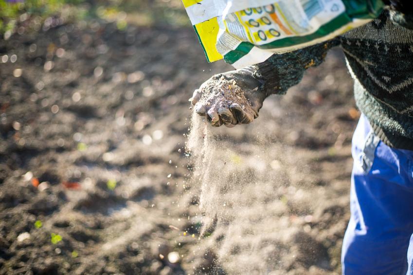 Nawożenie ogrodu oraz nawozy azotowe, ceny nawozów azotowych, sztuczny nawóz azotowy