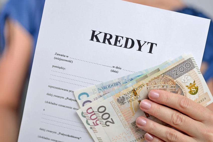 Określenie zdolności kredytowej, czyli jak sprawdzić zdolność kredytową online