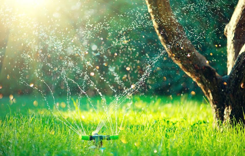 Nawadnianie trawnika w ogrodzie oraz system nawadniania trawnika, automatyczne nawadnianie trawnika