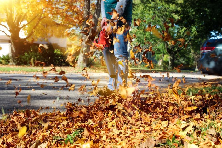 Dmuchawa do liści podczas użycia, a także dmuchawa ogrodowa, jej modele i cena