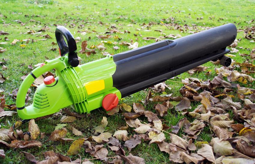 Zielona dmuchawa do liści w ogrodzie, a także dmuchawa ogrodowa, polecane modele i ceny