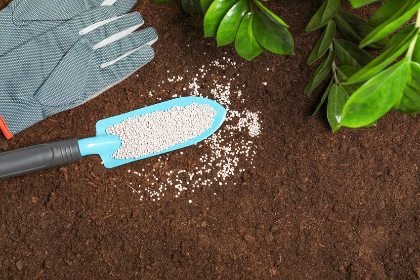Nawóz w ogrodzie na łopatce, a także nawozy npk, nawóz wieloskładnikowy i cena