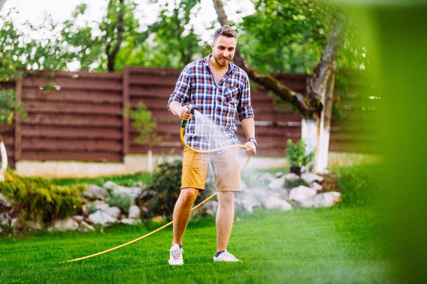 Mężczyzna podczas podlewania trawnika w ogrodzie, a także podlewanie trawnika