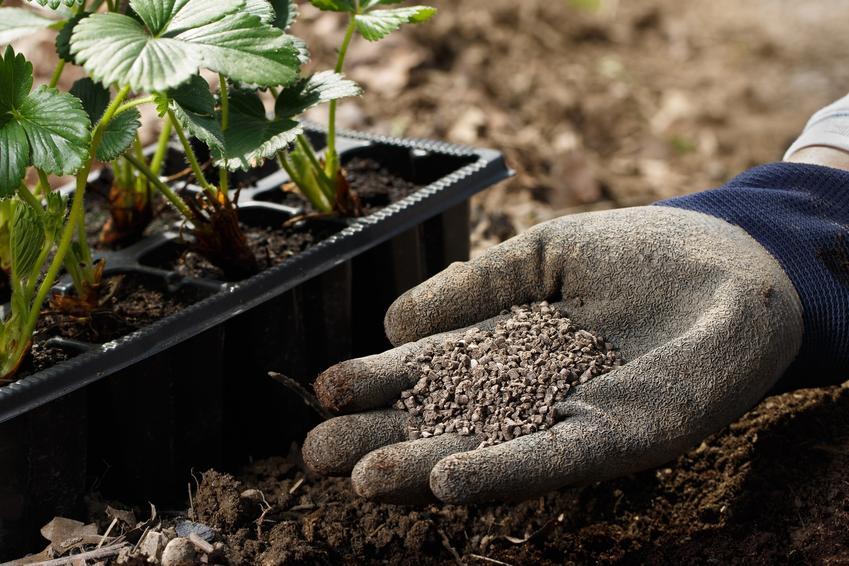 Nawóz organiczny na dłoni, a także nawozy organiczne, ich rodzaje i stosowanie nawozów organicznych