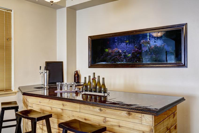 Akwarium w ścianie w kuchni, a także jak zrobić akwarium w ścianie i projekt akwarium