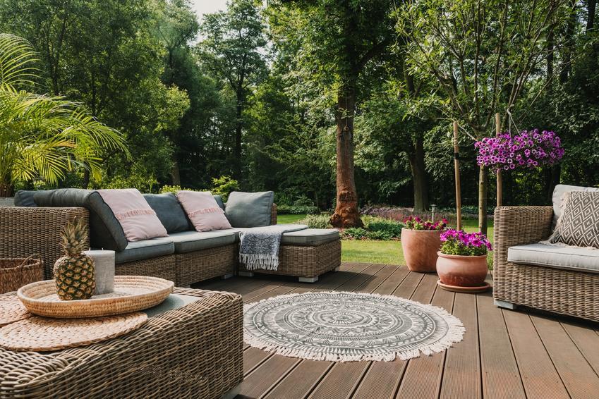 Piękny taras i ogród w tle, a także drzewa do ogrodu, drzewa iglaste i drzewa liściaste