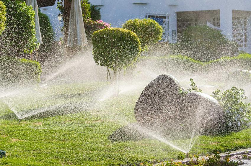 Nowoczesny system nawadniania ogrodu, czyli zamgławianie i podlewanie ogrodu, systemy nawadniania i ich zalety