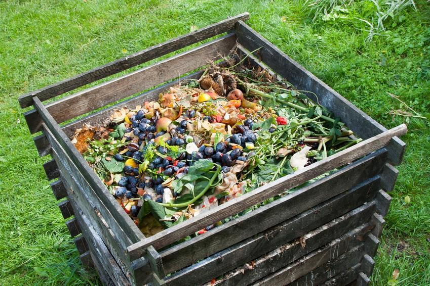 Kompostownik w ogrodzie, a także nawozy naturalne, gnojówka z pokrzyw i kompost do ogrodu
