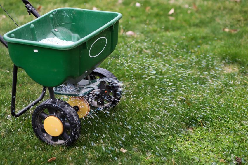 Ręczny siewnik do nawozu na trawniku, a także rozsiewacz do nawozów i rodzaje