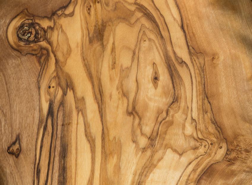 Drewno tekowe z bliska lub drzewo tekowe, a także właściwości drewna tekowego
