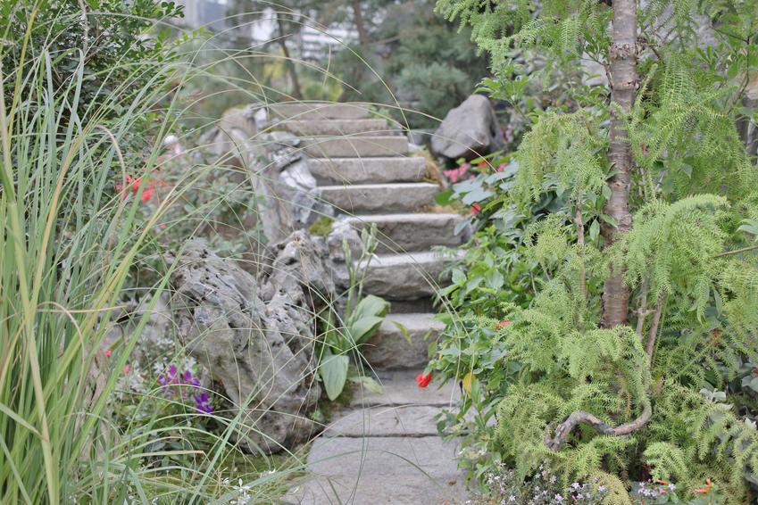 Skalniak ze schodkami w ogrodzie, a także skalniaki przed domem, skalniaki koło domu
