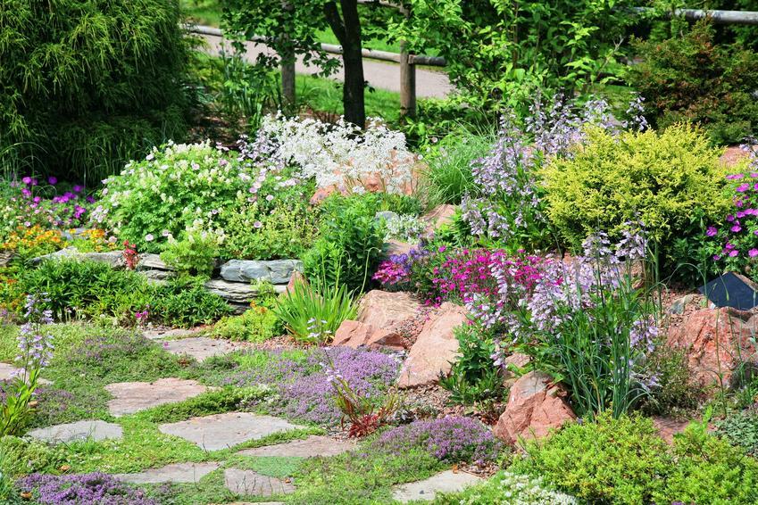 Piękny skalniak z kwiatami w ogrodzie oraz skalniaki przed domem, skalniaki koło domu