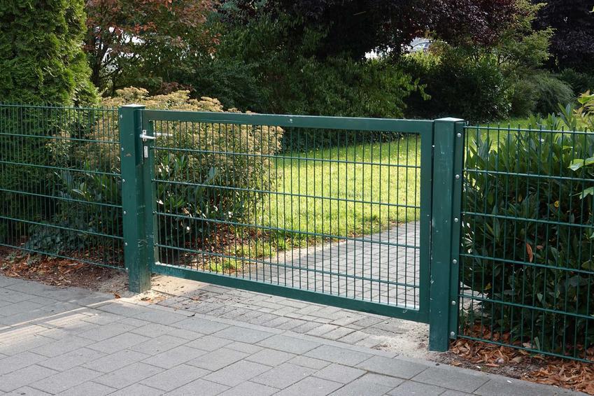 Ogrodzenie z siatki z bramą z siatki w ogrodzie z żywopłotami, a także najlepsze ogrodzenia z siatki krok po kroku, rodzaje, opinie, zastosowanie