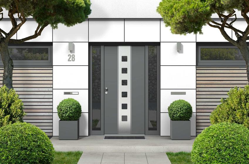Drzwi zewnętrzne stalowe w nowoczesnym domu jednorodzinnym, a także sposób montażu, najlepsze modele i producenci, rozwiązania