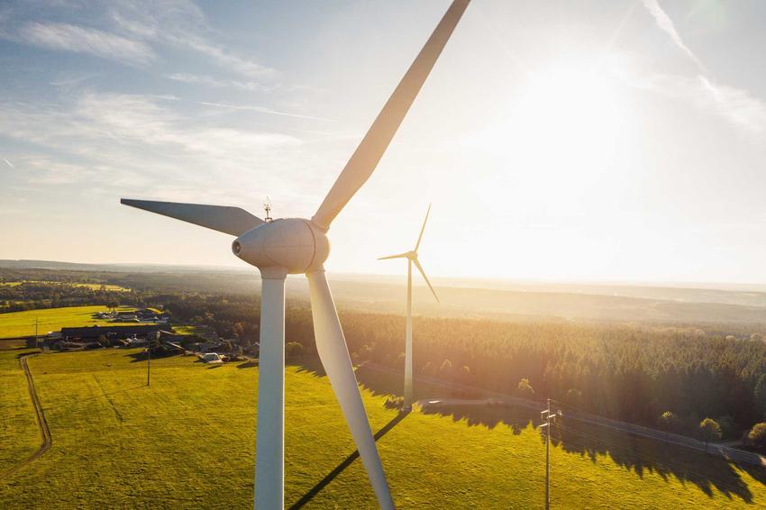 Wiatrak na tle pola rzepaku, a także informacje o energii wiatrowej, zastosowanie oraz opłacalność krok po kroku