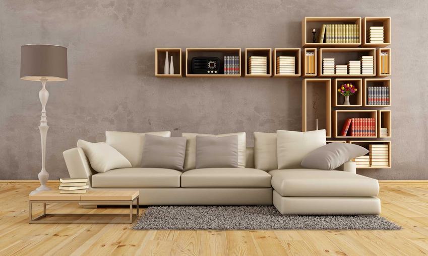 Meble modułowe na ścianie za kanapą w salonie, a także informacje o meblach modułowych: rodzaj, ceny, montaż i porady