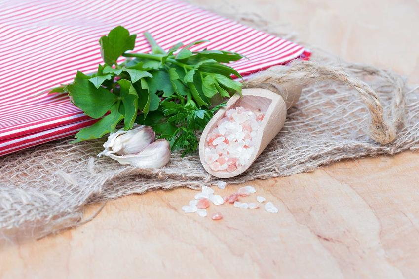 Kępa lubczyku ogrodowego przy czosnku i soli himalajskiej, a także działanie lubczyku, właściwości lecznicze, uprawa i pielęgnacja w ogrodzie i w doniczce