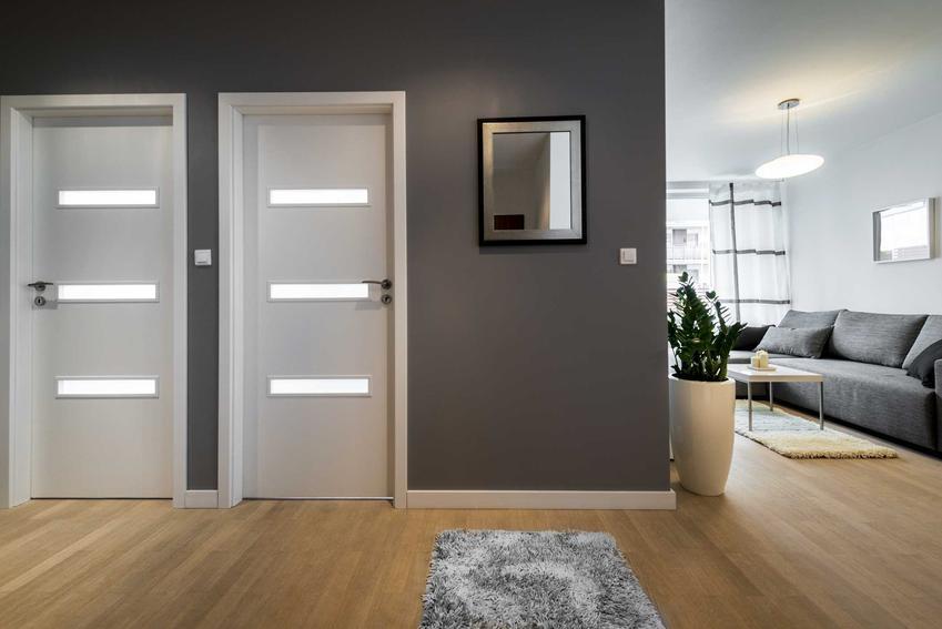 Standardowe drzwi wewnętrzne drewniane w korytarzu, a także nietypowe i typowe wymiary drzwi wewnętrznych w domu krok po kroku