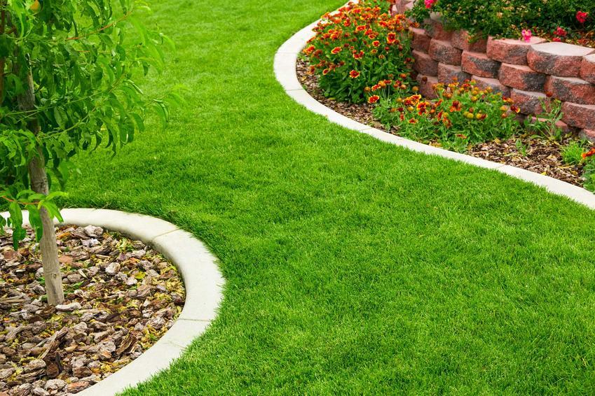 Betonowe obrzeza trawnikowe wokół rabatek, a także rodzaje obrzeży trawnikowych, montaż, cena oraz porady dla ogrodników