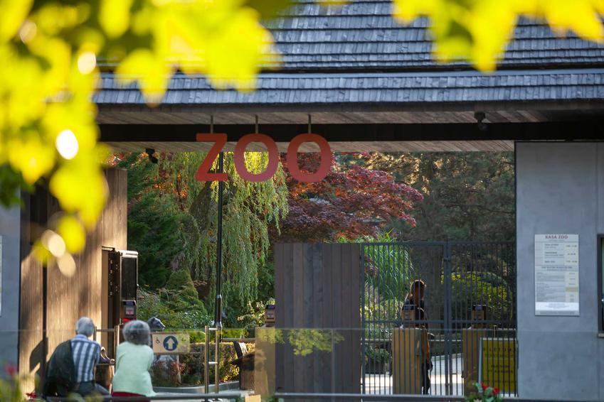 Wejście do ZOO w Polsce, a także cennik biletów do ZOO - cena wejściówek do ogrodów zoologicznych w różnych miastach