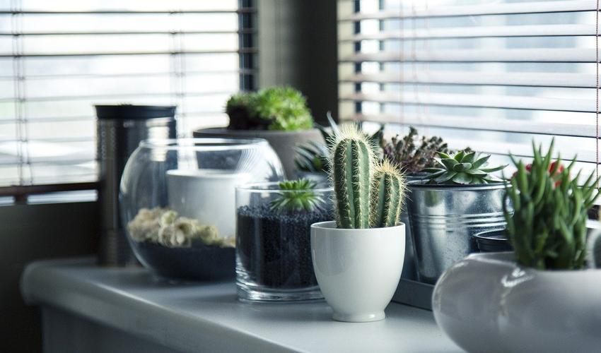Rolety, okna, bramy, moskitiery - warto zainwestować we własne otoczenie