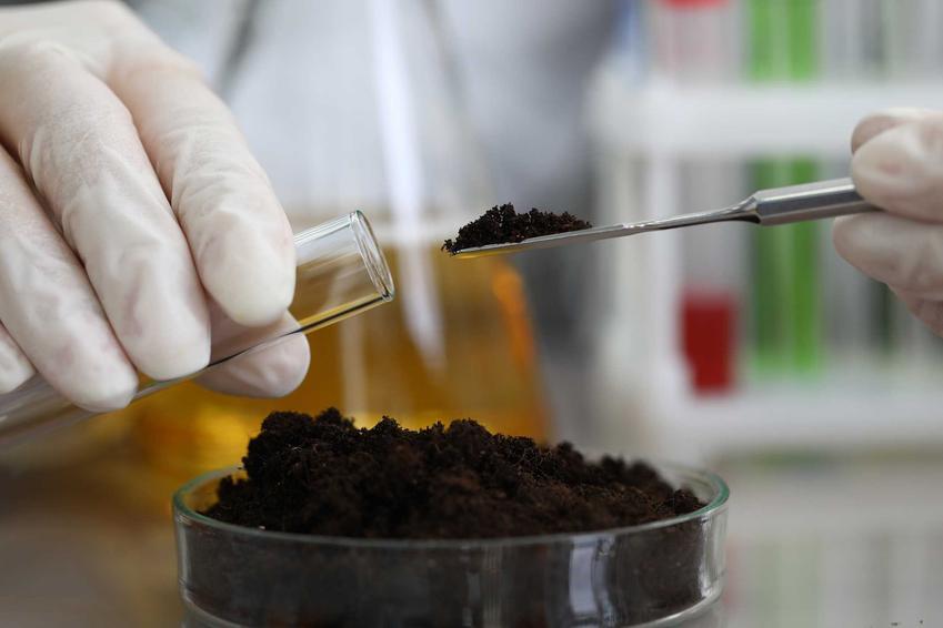 Pobrana próbka gleby do zmierzenia kwasowości, a także kwasomierz glebowy, producenci oraz ceny
