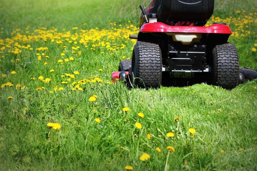 Koszenie trawy za pomocą traktorku kosiarki, a także rodzaje, ceny, porady oraz opinie