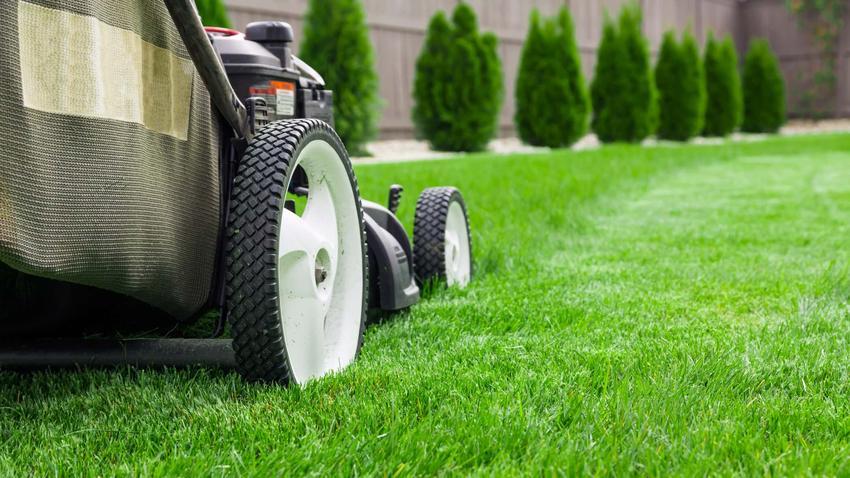 Kosiarka stoi na trawniku, jak prawidłowo napowietrzyć trawnik, jak wykonać aerację wgłębną