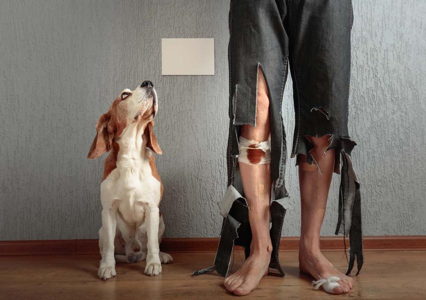 Mężczyzna w poszarpanych spodniach, a obok niego pies patrzący w górę,