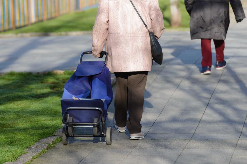 Starsza pani z wózkiem na zakupy, a także informacje o wózkach na zakupy, działanie, opinie i wybór oraz cena