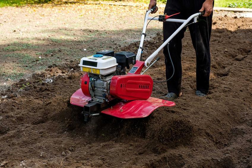 Glebogryzarka w czasie pracy w ogrodzie, a także informacje, która glebogryzarka sprawdza się najlepiej krok po kroku