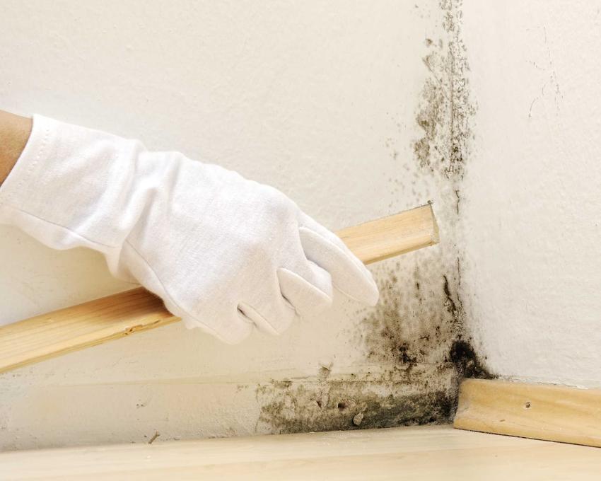 Stosowanie mydła malarskiego to świetne rozwiązanie. Jest potrzebne w czasie mycia ścian przed malowaniem.