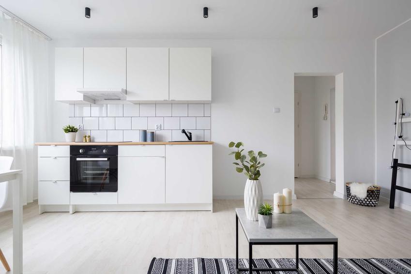 Aneks kuchenny w nowoczesnym mieszkaniu w porównaniu z osobną kuchnią, a także porady dla właścicieli mieszkań i domów