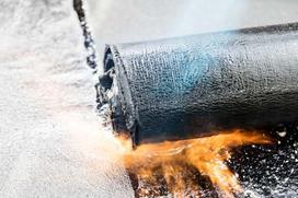Ile kosztuje rolka papy termozgrzewalnej?