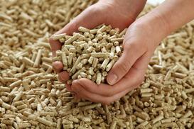 Ceny pelletu a jego wartość opałowa - co warto kupić?