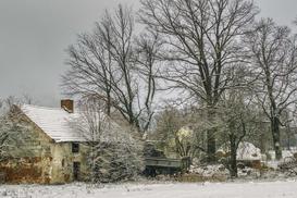 Działka siedliskowa - co warto wiedzieć, budując dom na działce siedliskowej?