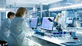 Ile kosztuje badanie DNA? Sprawdzamy ceny testów na ojcostwo