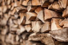 Jak wybrać drewno opałowe? Rodzaje drewna, opinie, ceny, porady