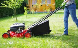 Jak i kiedy kosić trawnik przed i po zimie? Poradnik praktyczny