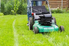 Kosiarki do trawy – rodzaje, ceny, opinie, porady przy wyborze