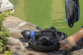 Jaka pompa do oczka wodnego? Rodzaje, ceny, opinie, producenci