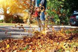 Jak wybrać dmuchawę do liści - rodzaje, ceny, opinie, polecane modele
