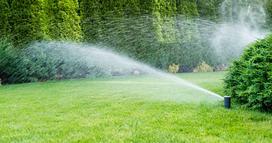 Jak nawadniać ogród?