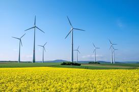 Farma wiatrowa – opis, zasady działania, wady i zalety