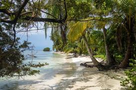 Jakie dodatki do sypialni stworzą tropikalny klimat?