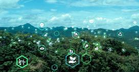 Pomysły dla samorządowców – w trosce o środowisko