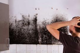 Osuszanie budynków - co zrobić, gdy w domu jest wilgoć?