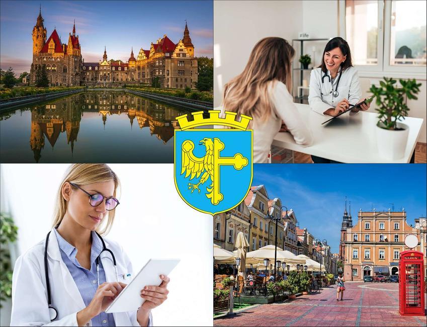 Opole - cennik prywatnych wizyt u immunologa - sprawdź lokalne ceny w poradniach immunologicznych