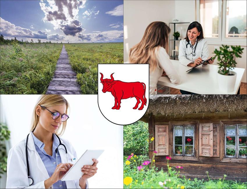 Bielsk Podlaski - cennik prywatnych wizyt u immunologa - sprawdź lokalne ceny w poradniach immunologicznych